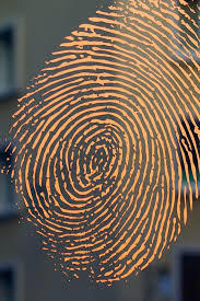 Web fingerprint