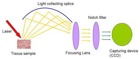 raman spectroscopy3